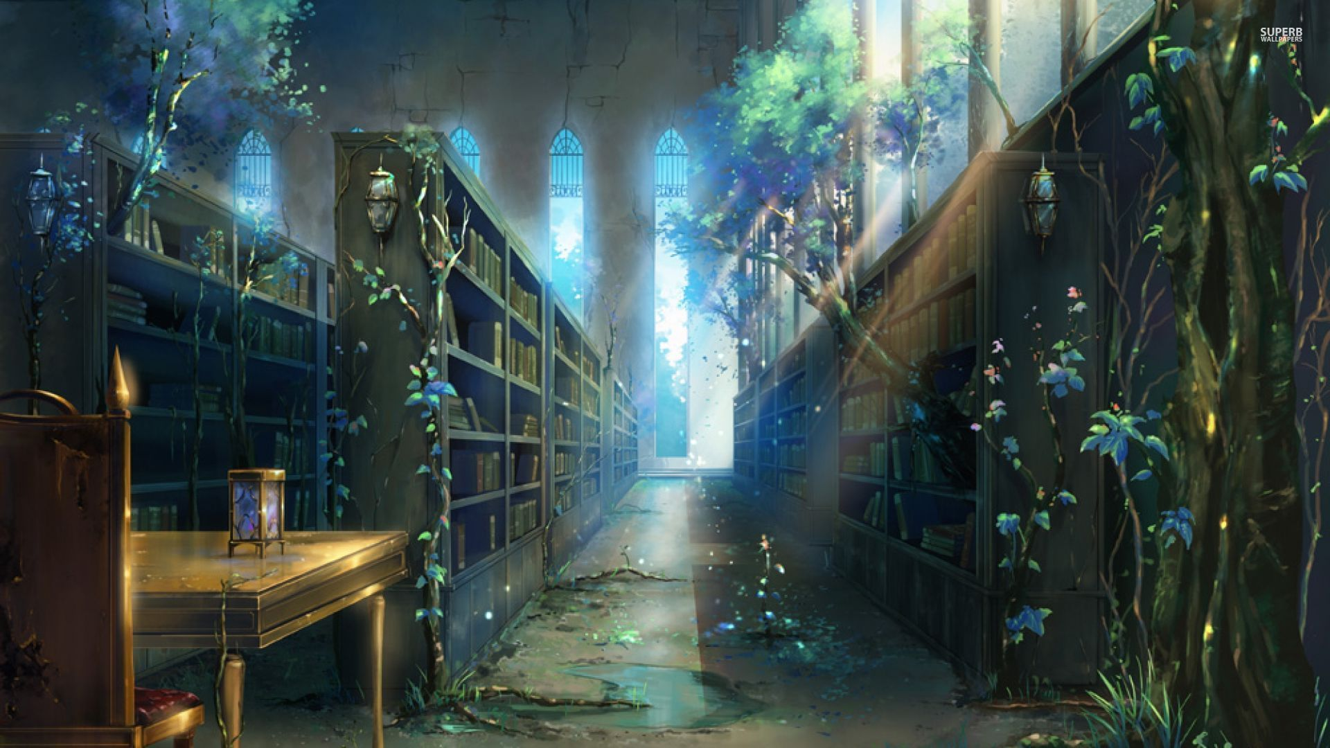 fantasy library - Google Search