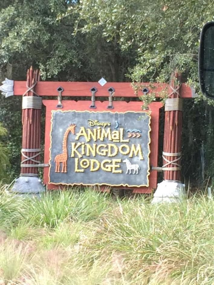 Five Reasons I Love the Villas at Disney's Animal Kingdom Lodge #animalkingdom