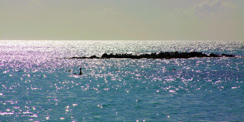 Ocean waves photography turquoise sea teal blue ocean waves beach