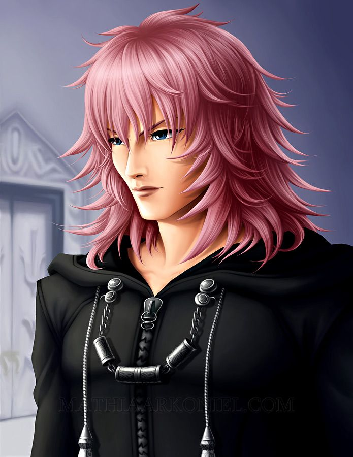 Marluxia Kingdom Hearts Kingdom Hearts Kingdom Hearts