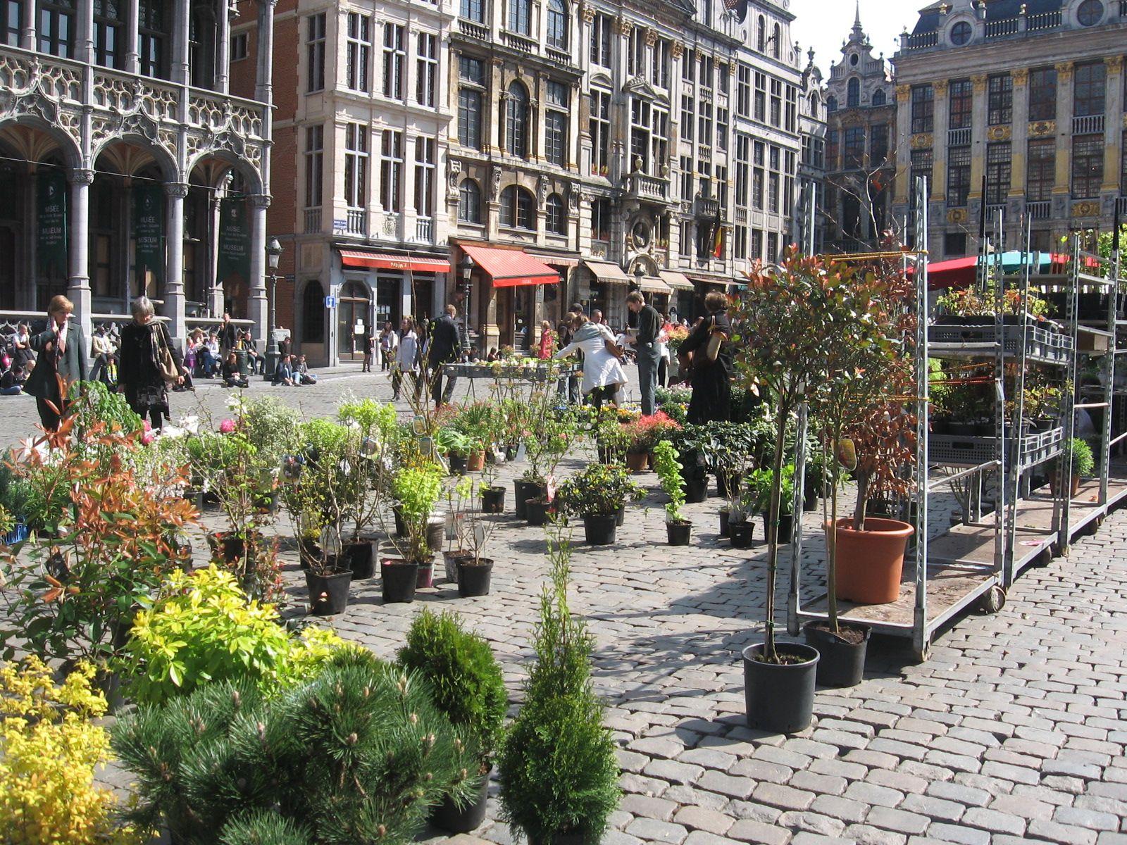 Grote Markt, Brussel, België