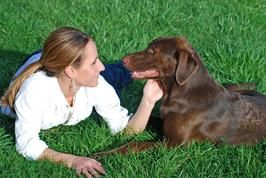 Landscaping for Dog Owners : Home Improvement : DIY Network