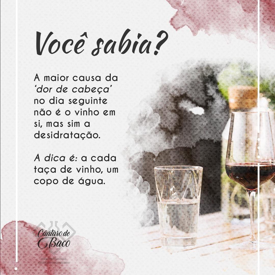 O segredo é esse: alternar taça de vinho com copo de água 🍷 🥛 🍷 🥛 . #CantarodeBaco #vinhozinho #vinhoterapia #vinhodoporto #vinhosdeportugal #vinhotododia #vinhorose #vinhochileno #vinhoportugues #vinhosempre #vinhoévida #vinhobom #amantesdovinho #vinhobrasileiro #vinhosportugueses #vinhoargentino #vinhosequeijos #vinhododia #vinhoverde #organicwine #vinito #enoteca #vinoargentino #degustazione #winemaker #cabernet #winelove