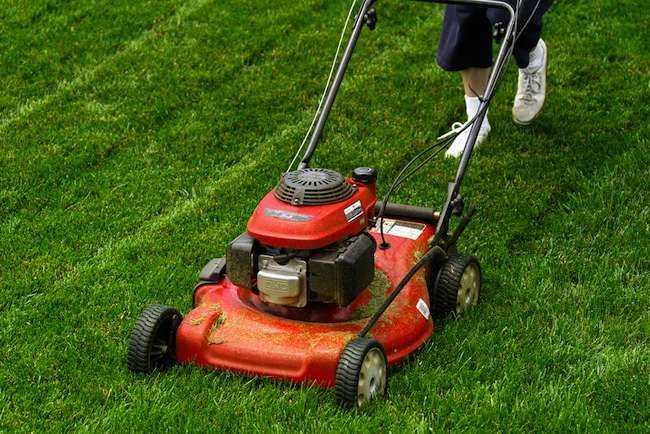10 Must Do Projects For April Lawn Care Lawn Mower Lawn