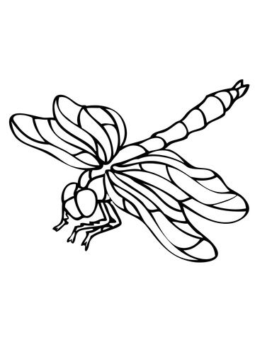 Dragonfly Coloring page | Paper Art | Pinterest | Dragonflies ...