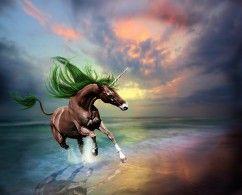 Hintergrundbilder Magische Tiere Einhorn Küste Lauf Fantasy