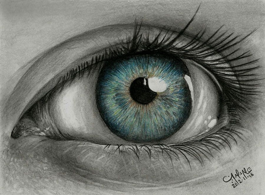I Looked Up Realistic Eye On Google And I Thought This One Was One Of The Best