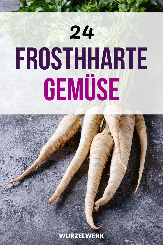 24 Gemüse, die du im Winter anbauen kannst!