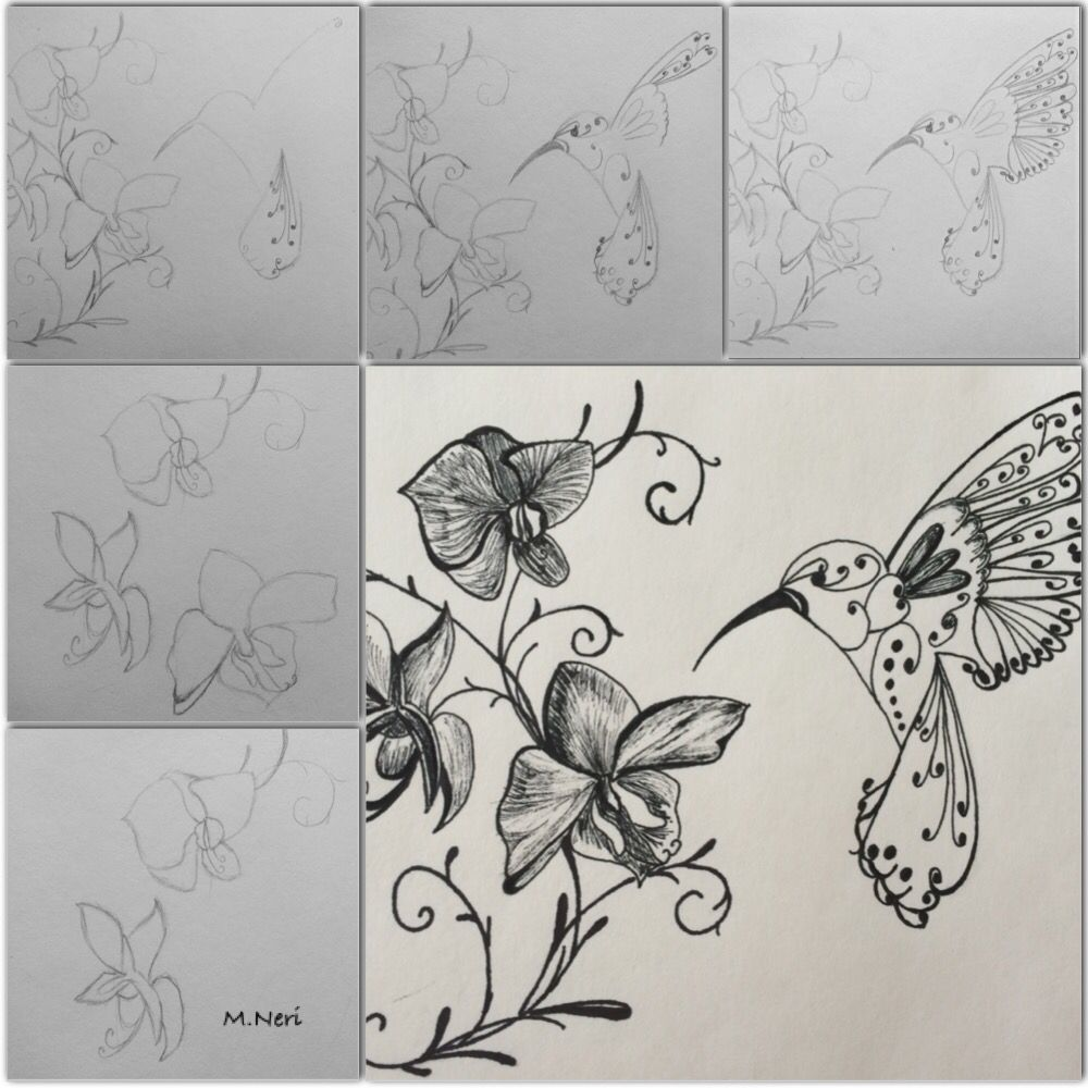 Drawing with black ink pen by melissa neri art pinterest