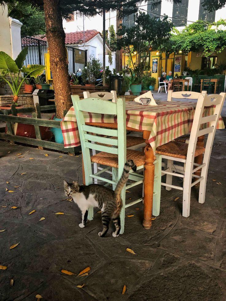 Photo of Restaurant tips for the Greek island Samos