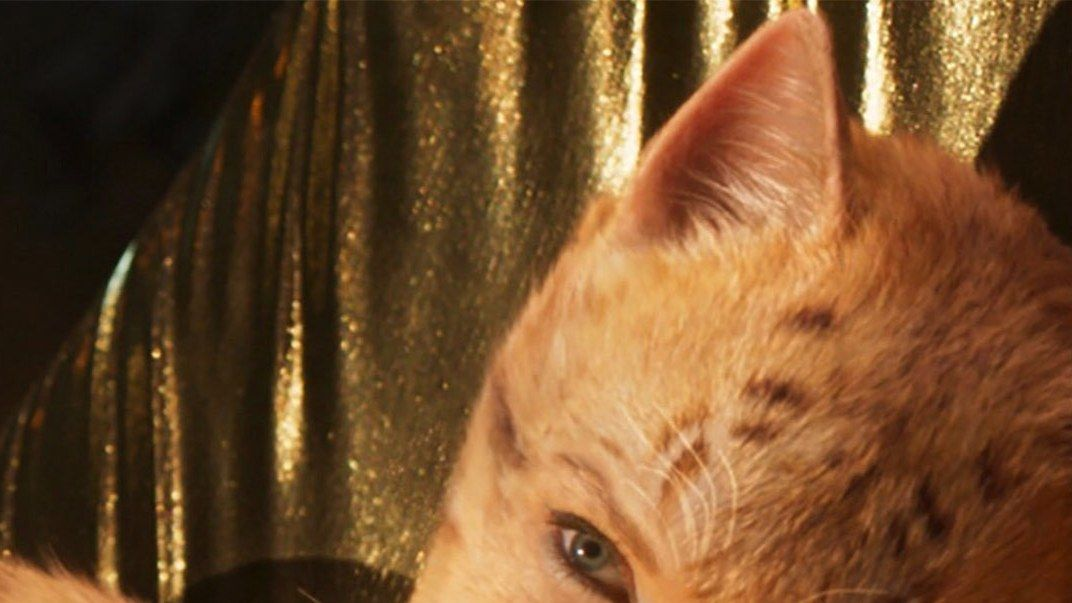 Listen To Taylor Swift S Original Song With Andrew Lloyd Webber For The Cats Movie In Full Cat Movie Cats Cast Cats