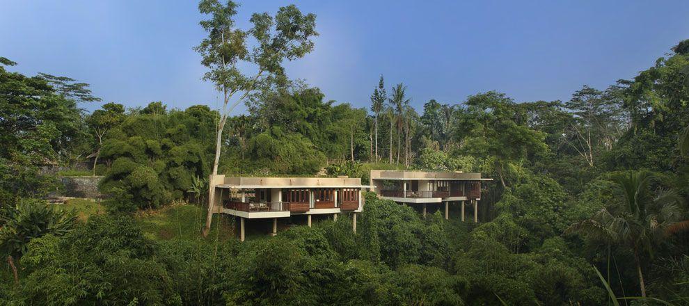 Alila luxury restort---$220/night. Open air showers/baths. Tree Houses. Modern pool. GORGEOUS!!!! Ubud Bali Indonesia