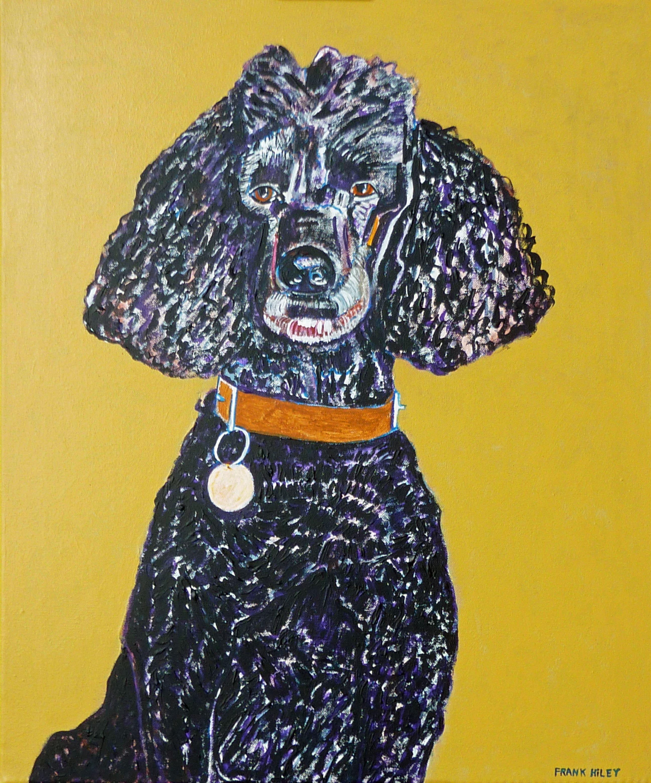 A portrait of Rocky the poodle. Title: Hello