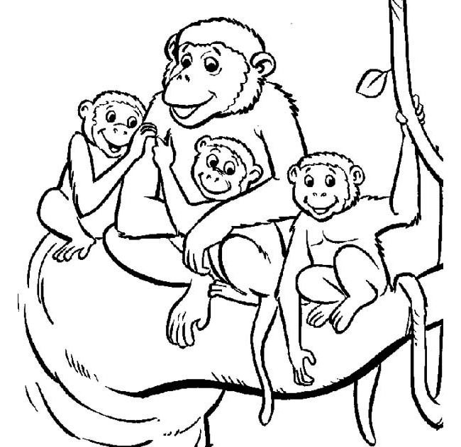 Monkey Template 33 Jpg 650 631 Pixels Monkey Coloring Pages