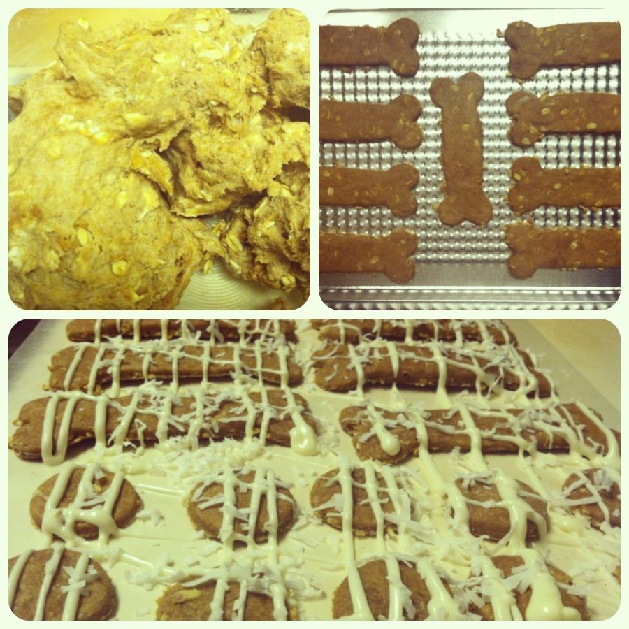 Peanut butter oatmeal doggy treats with white chocolate & coconut.