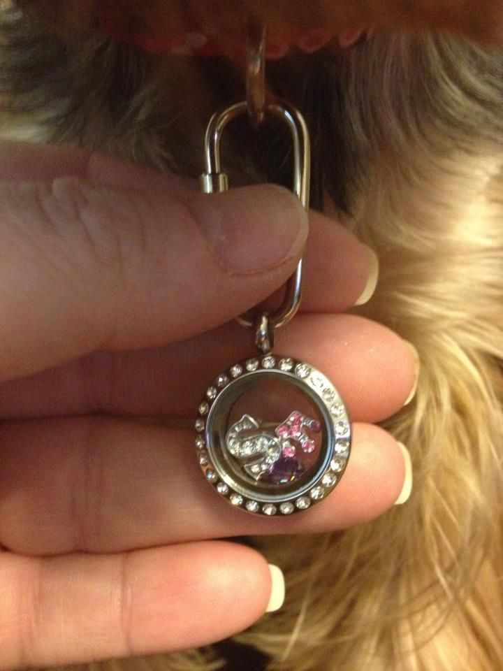 Lockets For Dog Collars