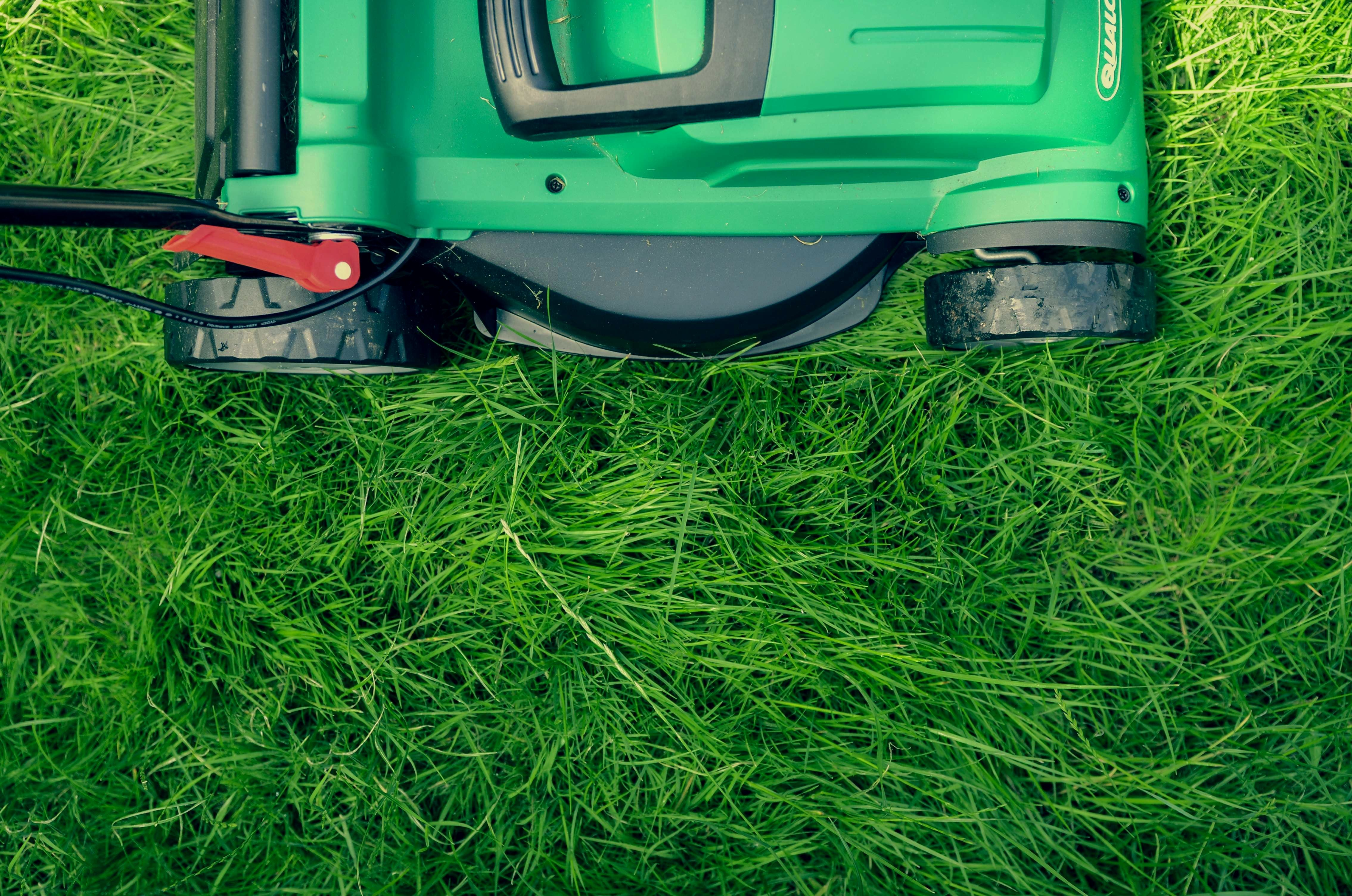 Jamey O Neil On Organic Lawn Care Lawn Treatment Lawn Care