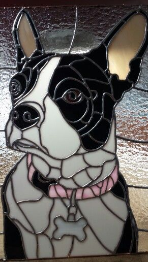 Stained glass dog Jazz Boston Terrier 18x12 inch stained glass panel.