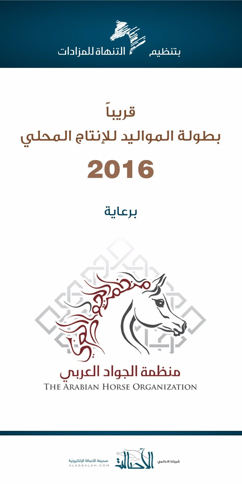 ترقبوا بطولة المواليد للإنتاج المحلي Arabian Horse Arabians Horses