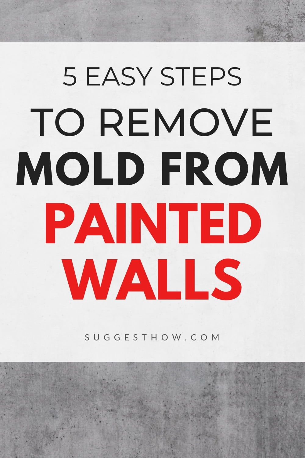 How to Remove Mold from Painted Walls – Easy and Simple Ways