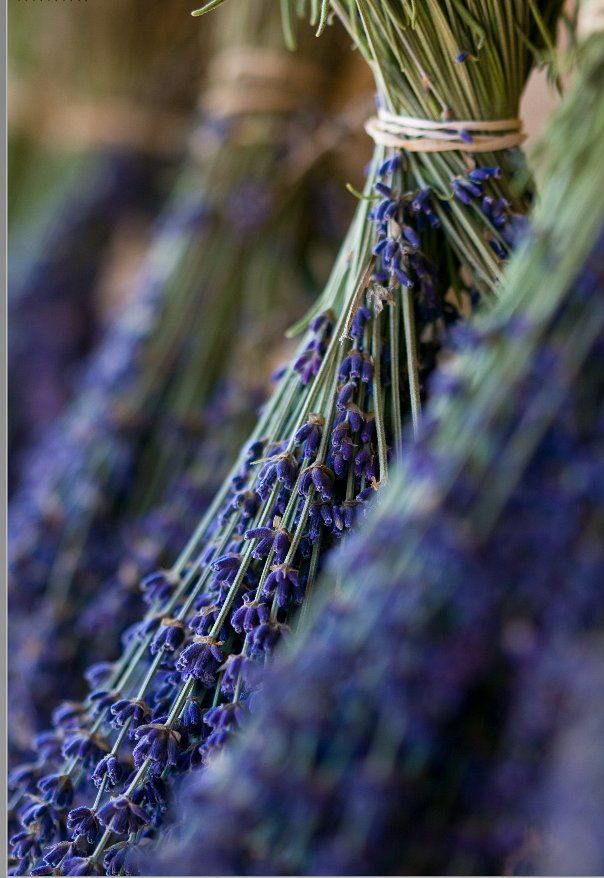 So many uses for lavender!
