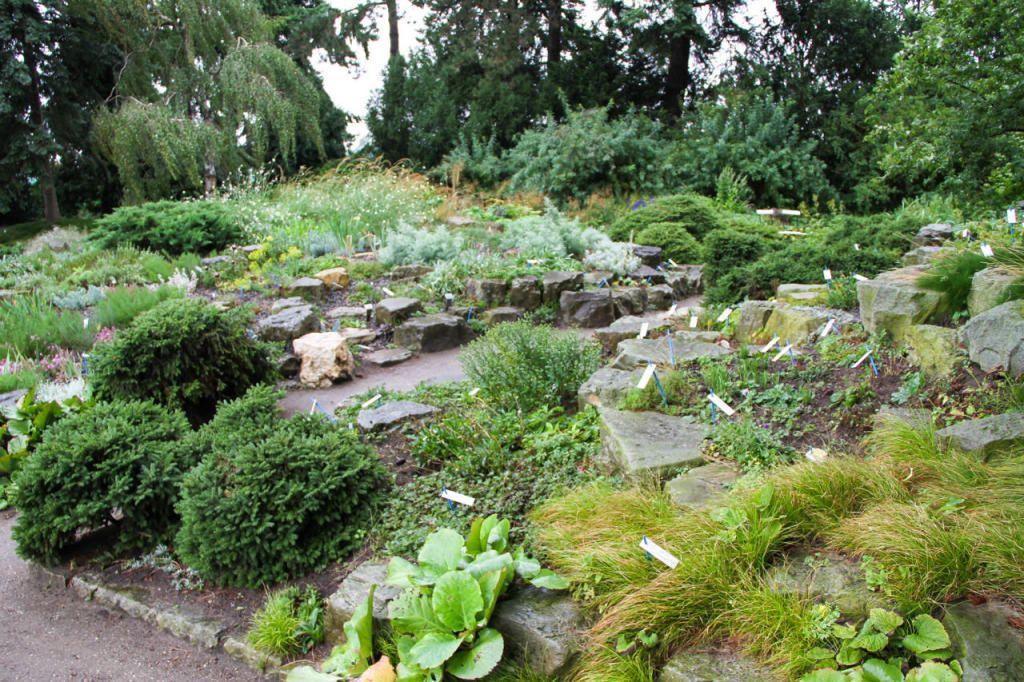 Sieben Schritte Zum Steinreichen Garten Nachrichten At Garten Draussen Steine