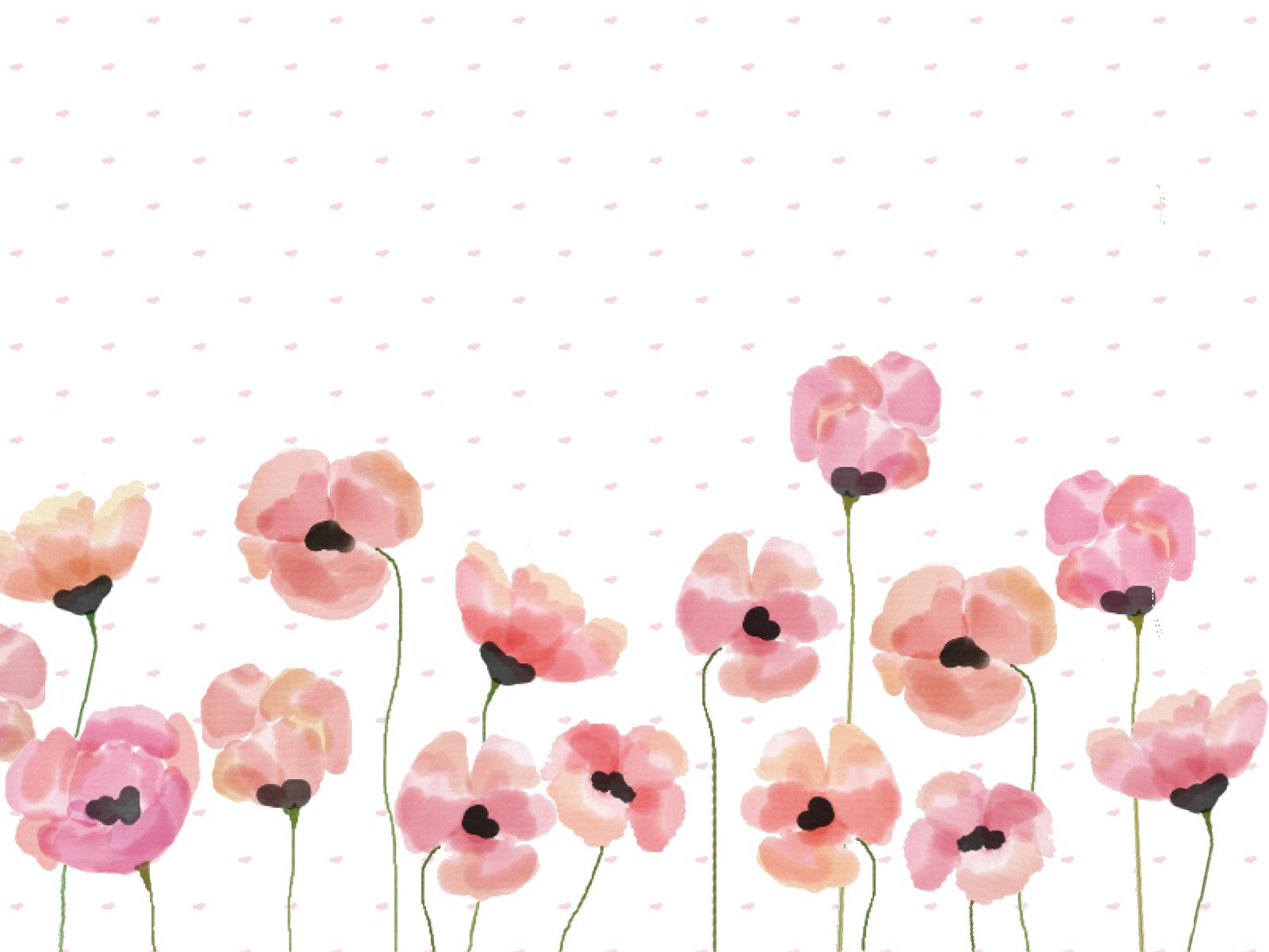 Pink Watercolour Poppy Desktop Wallpaper Backgrounds