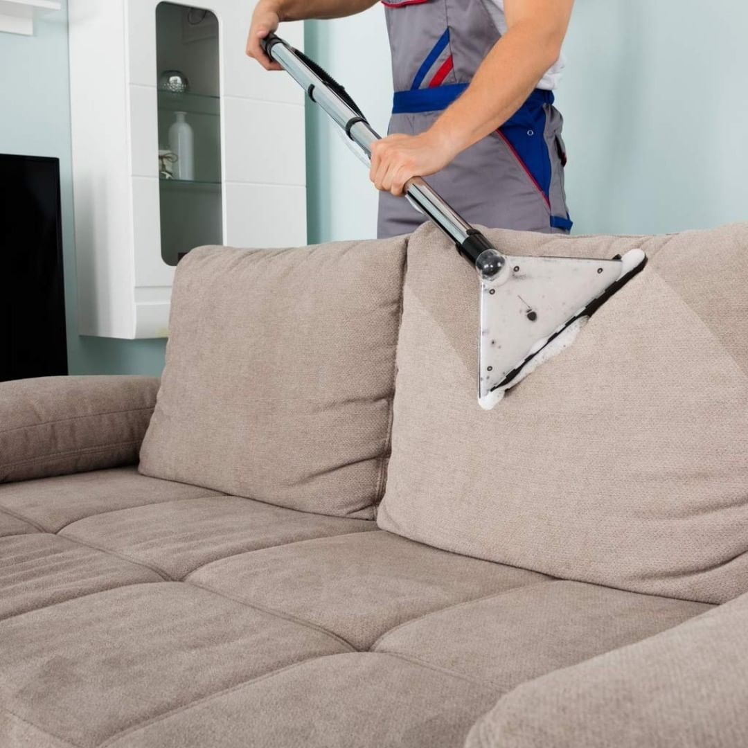 Upholstery Cleaning In San Francisco Bay Area Visit Now In 2020