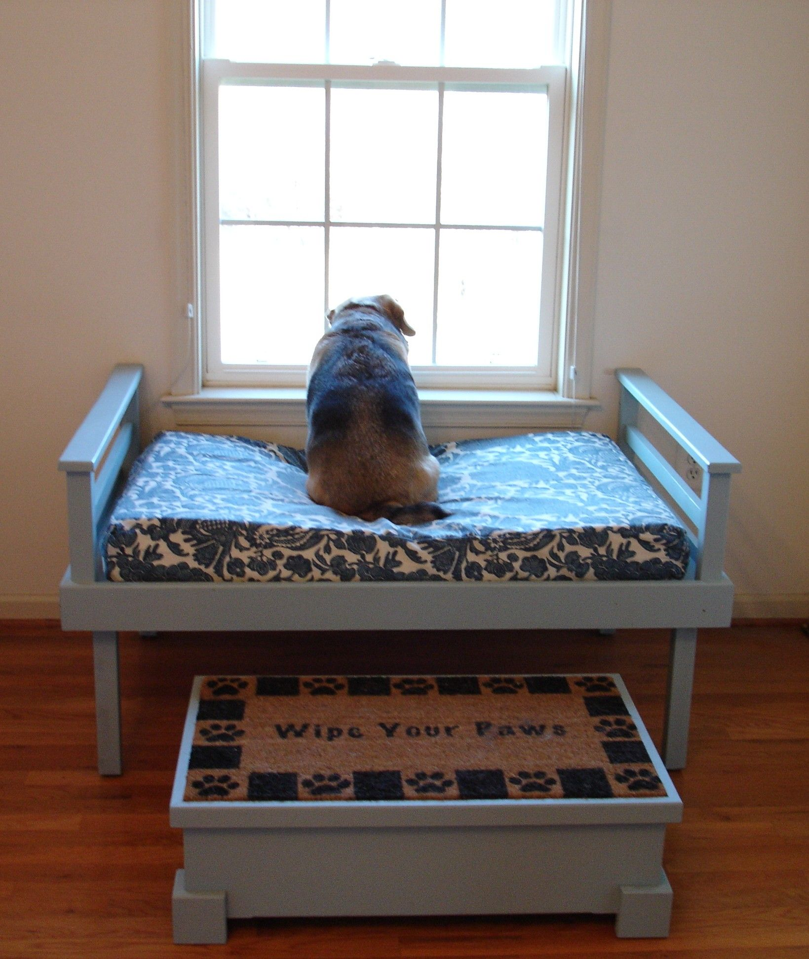 25 modern design ideas for pet beds that dogs and owners want animals diy dog bed pallet. Black Bedroom Furniture Sets. Home Design Ideas
