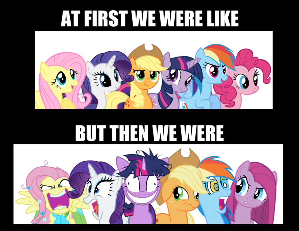 Fluttershy is mad, Rarity is shocked, Twilightsparkle is