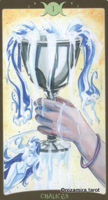 Đặc biệt Lá Ace of Chalices - Book of Shadows Tarot (So Below) bài tarot