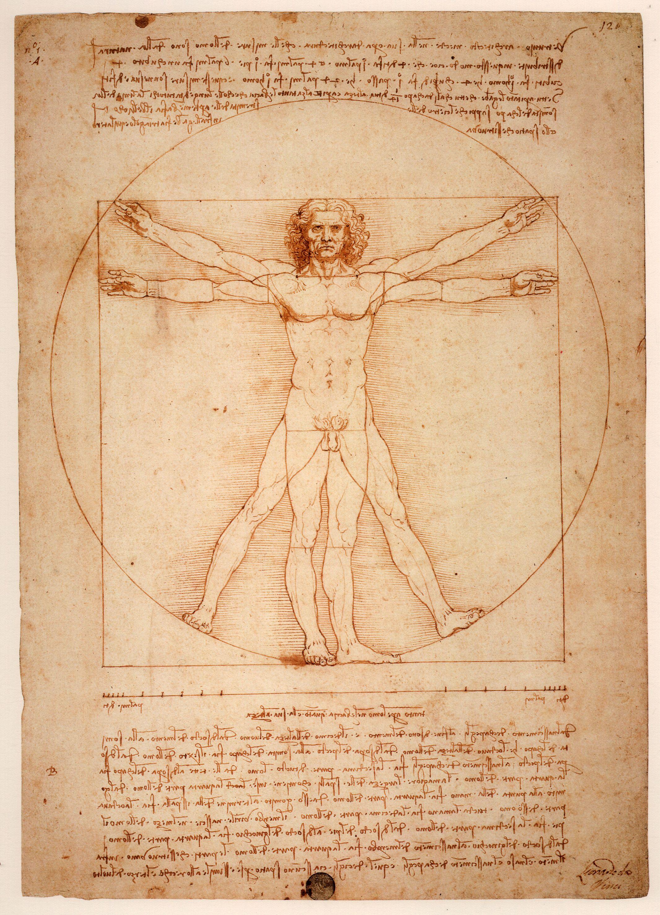1500 Leonardo Da Vinci Uomo Vitruviano E Una Dimostrazione Scientifica In Risposta A Vitruvio Che Nel De Architectur Leonardo Da Vinci Arte Famosa Painting