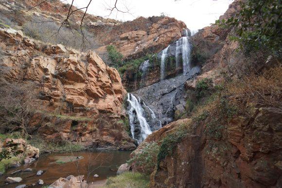 Botanical garden- South Africa