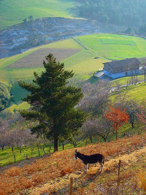 Basque Landscape Gipuzkoan Mountains