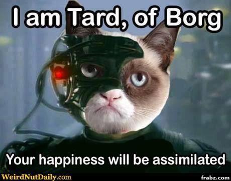 52601c13da53b1c677abdf404946c06b www bing com images search?q=borg memes resistance is