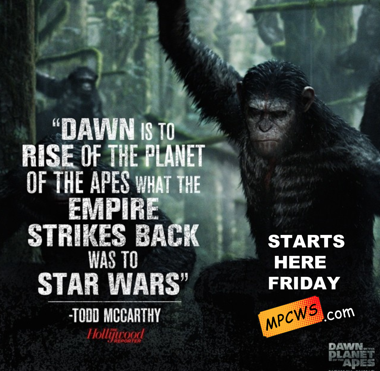 Dawn Of The Of The Apes Starts Here Friday! We are