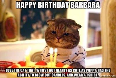 Rich Boyfriend Meme Birthday Cat Happy Birthday Barbara Love The