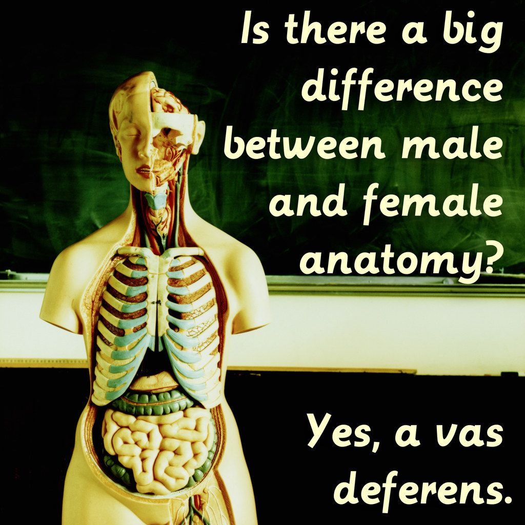 15 Jokes That Only Biologists Will Fully Understand | Funny ...