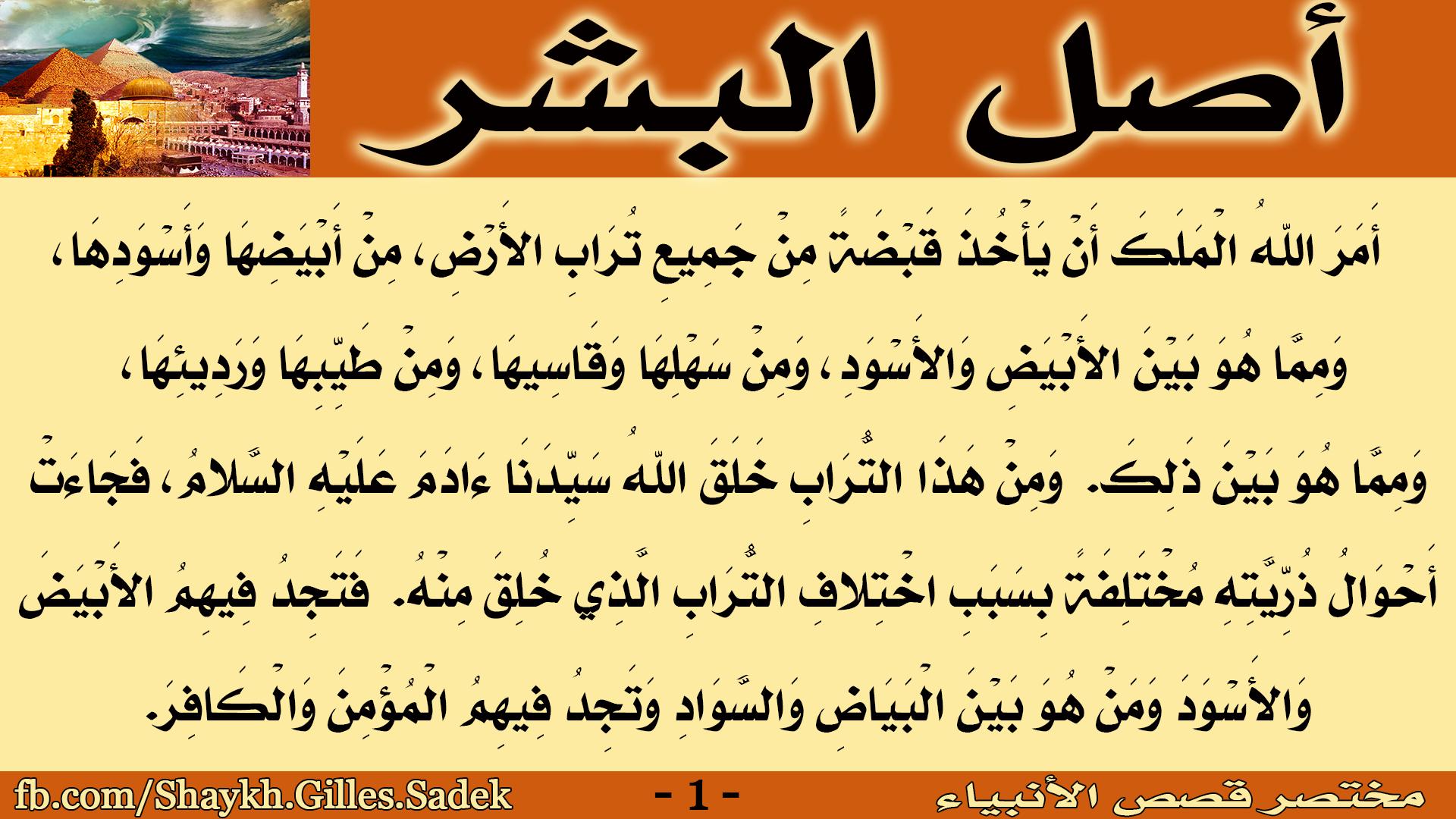 مختصر قصص الأنبياء 1 Arabic Words Arabic Islam