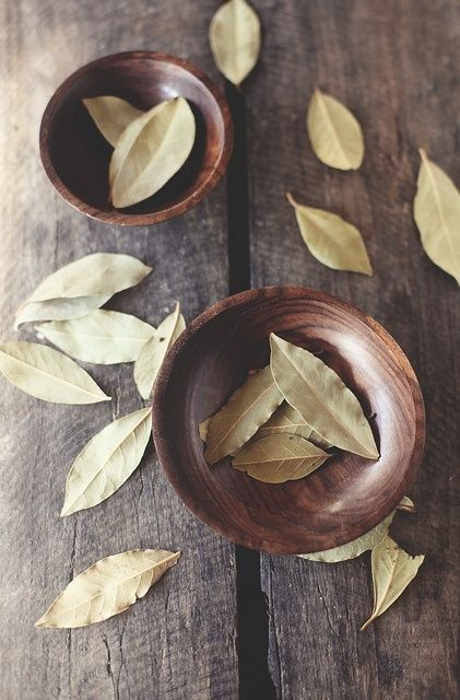 Bay Leaf can be used to increase psychic awareness  Sleeping