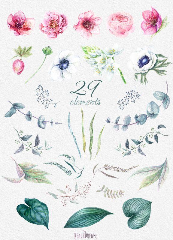 Matrimonio acquerello fiori Clipart fiori di di ReachDreams