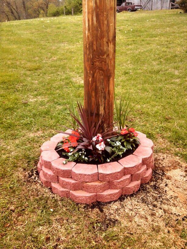 Small Flower Garden Around Telephone Pole Gardening