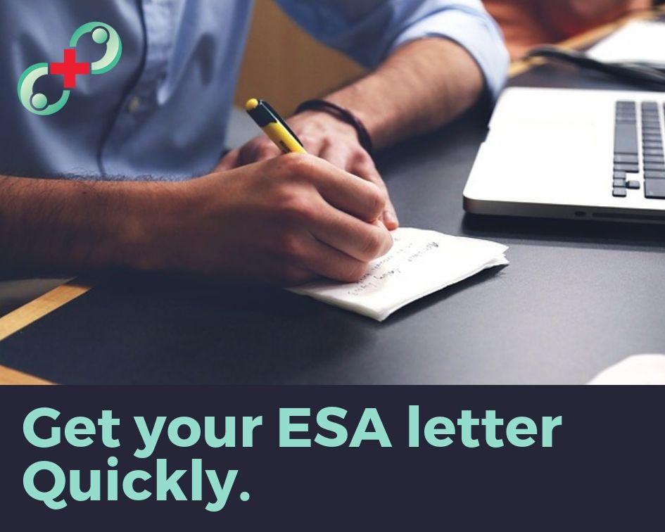 Get your ESA letter quickly. Esa letter, Emotional