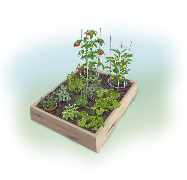 Simple 4X4 Summer Garden Plan...I think this, plus another 4X4 bed ...