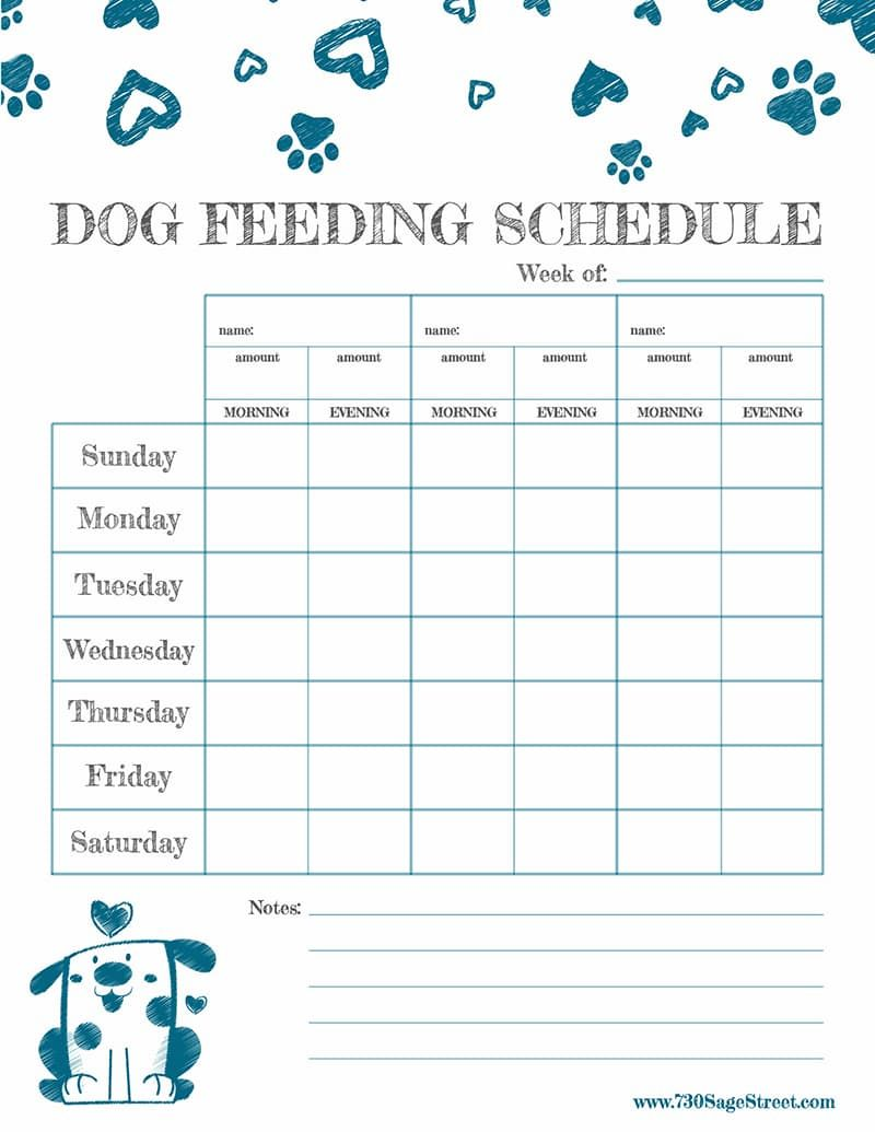 Free Printable Feeding Schedule to Track Your Dog's Food | Dog ...