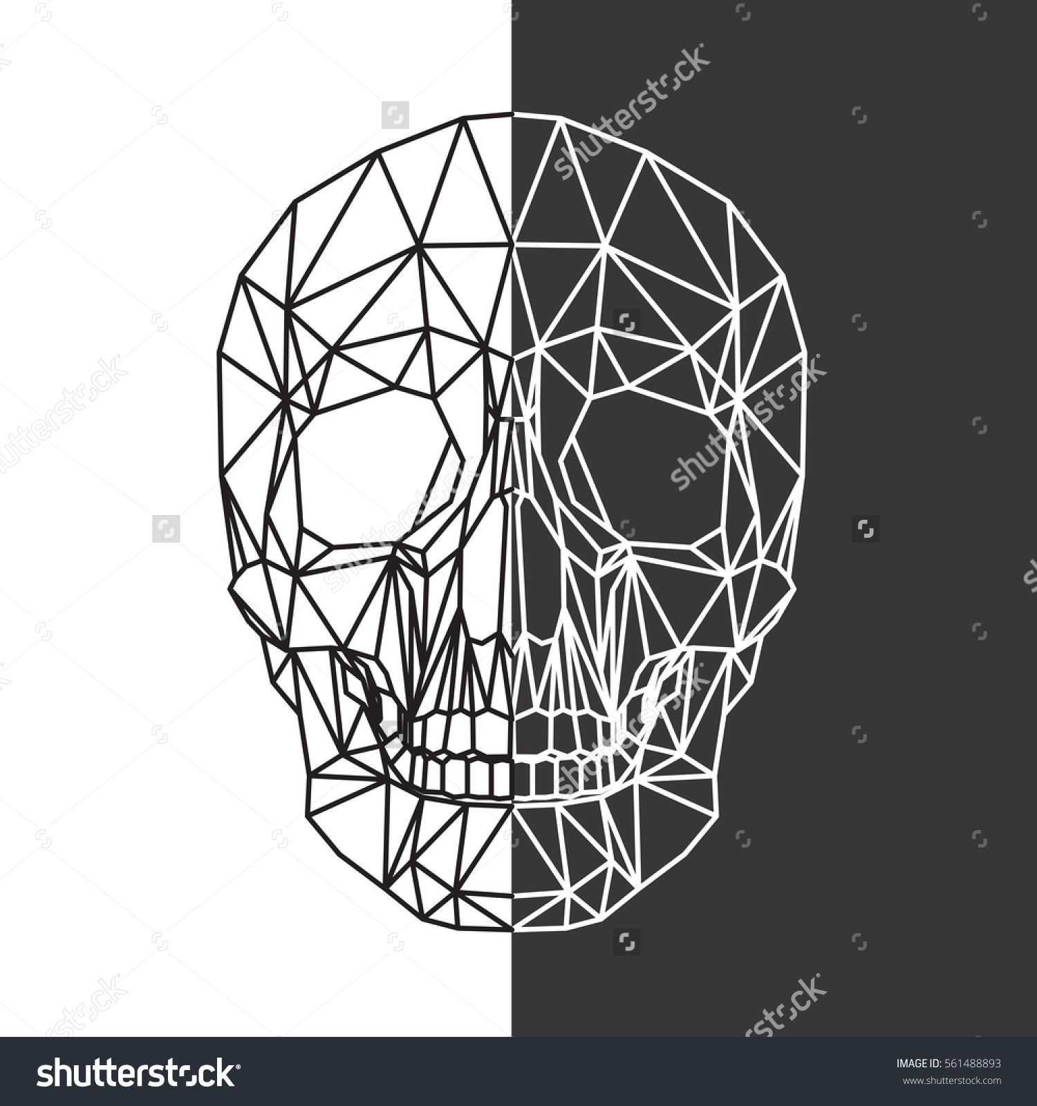 Human skull, cranium, abstract polygonal lines design on black and ...