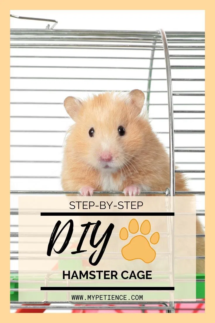 How To Make A Diy Hamster Cage On Your Own Easily Hamster Cage Hamster Diy Hamster House
