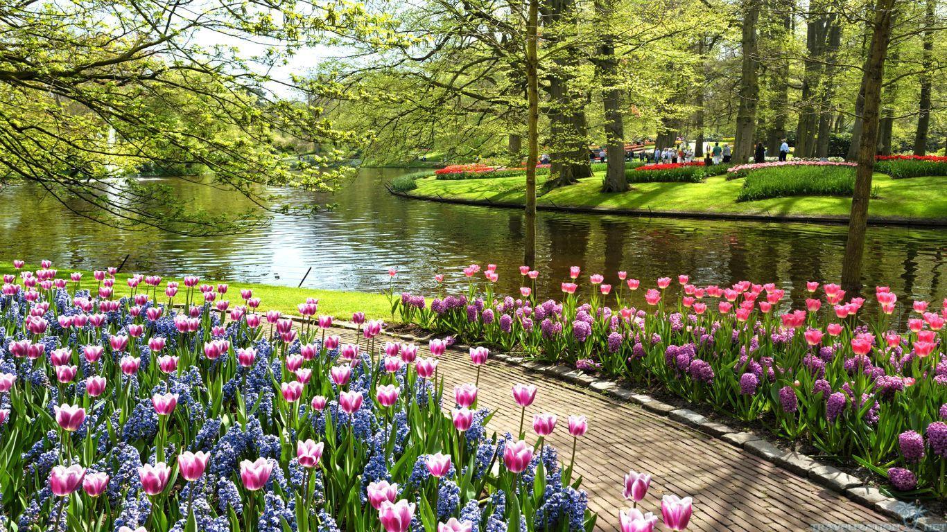 Image Result For Most Beautiful Flower Parks Flower Parks