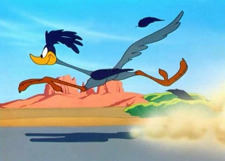 Road Runner Cartoon Silhouette Road Runner Cute Bunny Pictures