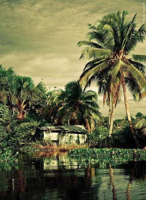 isla del tigre (venezuela)